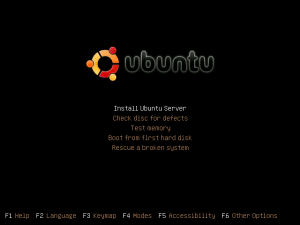 Ubuntu Server v9.04 Installation